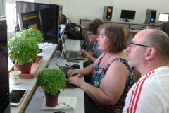 creating a plant watering alarm system using the micro:bit!